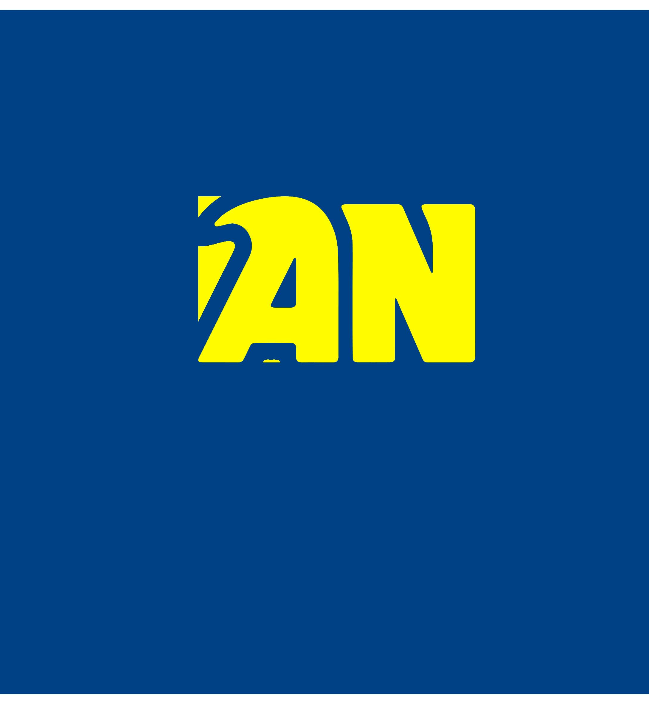 AN Organisation